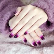 Lady Nail Art False Nails Pink Purple Gradient Acrylic Full Nail Tips Kit 24pcs Clear Moo Z254