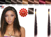 Wet N Wavy Bulk hair QUALITY HAIR Micro Braiding Super Bulk Style 1 Pack (2 Bundles) DEAL Length