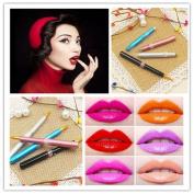 2Pcs Wispun Travel Capped Retractable Smooth Lipstick Gloss Lip Brush Makeup