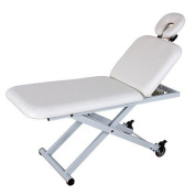 CROP Two Section One Motor Adjustable height and backrest Esthetician Chair USA Salon and Spa USA-2210A