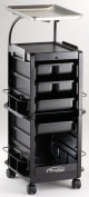Kayline Smart Cart SM100 with Chemical Service Tray Lockable [Misc.]