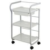 USA Salon and Spa Violet Beauty Trolley With 3 Tier Shelves USA-1017
