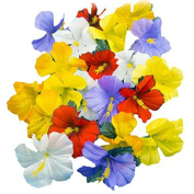 Adorox Hawaiian Luau Artificial Hibiscus Flower Petals Scatter Tropical Tabletop Decorations Weddings Confetti Party Favours