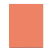Riverside Paper Groundwood Construction Paper, 46cm . x 60cm ., Orange