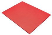 Riverside Paper Groundwood Construction Paper, 46cm . x 60cm ., Holiday Red