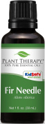 Plant Therapy Essential Oils Fir Needle Oil, 30ml