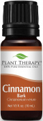 Plant Therapy Cinnamon Bark 10 ml Essential Oil