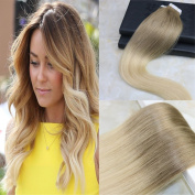 HairDancing 46cm Tape In Hair Extensions Human Hair Balayage Ombre Hair Extensions Colour #8 Light Brown To #613 Blonde PU Skin Weft Tape in Hair Extensions 50g 20 Pcs