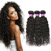 FASHION QUEEN Hair Brazilian Water Wave 3 Bundles Wet And Wavy Human Hair Brazilian Virgin Human Hair Extensions .12 14 41cm .