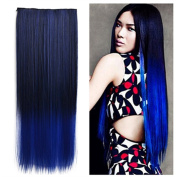 Heahair® Fashion Omber Straight Dip-dye Colour Synthetic Clip in Hair Extensions