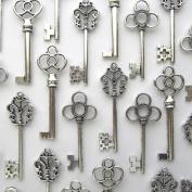 Aokbean Vintage Skeleton key in antique silver Style - set of 30pcs