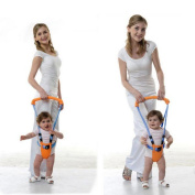 Kungfu Mall Baby Toddler Learn Walking Belt Walker Assistant Safety Harness