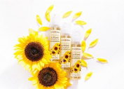Sunflower Beauty Oil (100ml)