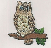 1 Pcs SMALL Appliques Machine on Cloth Needle Craft Sewing Projects Realistic OWL Halloween Animal Paw Print Iron-on Embroidery Patch DIY Decoration Patches For Jeans Clothing