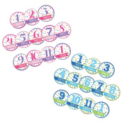 Baby Shower Gifts Boy Baby's First Year Monthly Stickers