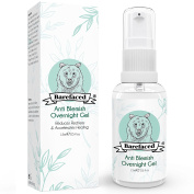 BeBarefaced Anti Blemish Overnight Gel - Natural Spot Treatment to Gently Sooth Problem Skin