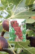 El Amor Como Enemigo [Spanish]