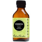 Verbena 100% Pure Therapeutic Grade Essential Oil by Edens Garden- 100 ml