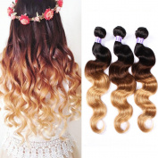 Shengmeiyuan Beauty Brazilian Virgin Hair Body Wave Ombre Hair Weft 3 Bundles Grade9A 100% Unprocessed Human Hair Weave Extensions Fashion Colour 3-Tone(1B#/4#/27#) 95-100g/pc
