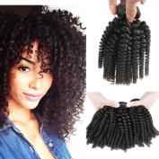 Peruvian Virgin Hair Funmi Hair Bouncy Curls Aunty Funmi Bouncy Curls for Black Woman Human Hair Extensions Tight Curls