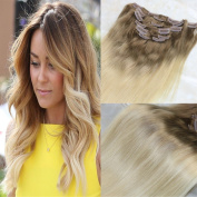 HairDancing 60cm 7Pcs 120g Clip On Human Hair Extensions Ombre Colour #8 Light Brown Fading to 613 Blonde Dip Dyed Extensions of Clip in Real Human Hair Extensions