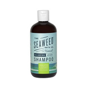 The Seaweed Bath Co Balancing Eucalyptus and Peppermint Argan Shampoo by The Seaweed Bath Co