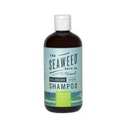 The Seaweed Bath Co Balancing Eucalyptus and Peppermint Argan Shampoo by The Seaweed Bath Co