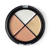 Cosmetics Concealer Palette, KRABICE 4 Colour Makeup Dark Circle Concealer Cream Yellow Circles Make Up Concealers Cream (40ml/40g) #2