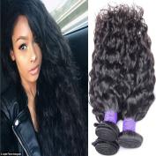 Lemoda Hair Brazilian Virgin Human Hair Water Wave Hair 3 Bundles 7A Grade Black Colour Human Hair Extension Weave (100+/-5g)/bundle