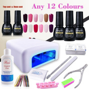 (Pick Any 12 Colours) Nail Art Polish Top Base 36W UV Lamp Gel Manicure Kit Soak Off Cleanser Plus Files Removers Buffer Nipper Push Wipes Stipes Roll Gift Set DIY by FairyGlo