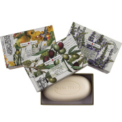 Set of 3 Sienna Hills Shea Butter Bar Soaps Luxury Bath Body Soap Decorative Gift Box Bundle