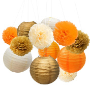 Esfun Tissue Paper Pom Pom Flowers and Paper Lanterns for Wedding Birthday Party Christmas Decoration, 12 Pieces