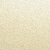 Cranberry Card Company Opal/Ivory Pearlescent Stardream 120Gsm Double Sided Premium Paper X 10