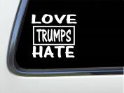 ThatLilCabin - LoveTrumps Hate 20cm AS398 car sticker decal