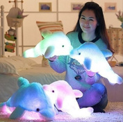 Kenmont Creative Night Colourful LED Light Soft Toy Glowing Stuffed Dolphin Plush Toys Relax Cushion Pillow