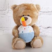 Pipp The Birthday Bear