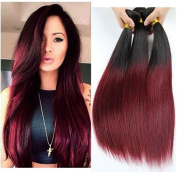 XCCOCO Hair Brazilian Ombre Hair Silky Straight Weft 4 Bundles Total 200g 100% Human Hair Weave Extensions