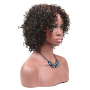 Secretgirl Short Afro Curly Wigs Synthetic African American Women Wigs Heat Resistant