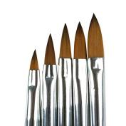 Segawe 5pcs Acrylic Nail Art UV Gel Carving Pen Brush Liquid Powder DIY No. 2/4/6/8/10