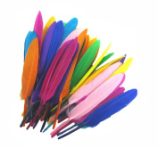 50PCS 4-6Inch (10-15CM) Mini Assorted Colour Quill Feathers for Home Wedding Decoration DIY Crafts