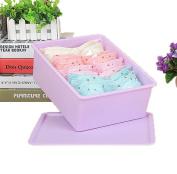 GAMT Plastic Underwear Bra Storage Box One Grid with a Lid Purple