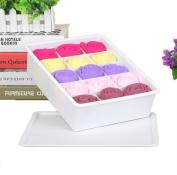 GAMT Plastic Underwear Bra Storage Box Fifteen Grid with a Lid white