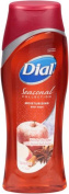Dial Seasonal Winter Escape Body Wash - 2 Pack
