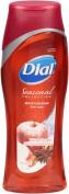 Dial Seasonal Winter Escape Body Wash - 2 Pack