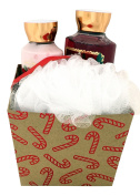 Bath & Body Works Winter Candy Apple Shower Gel and Body Lotion Gift Set