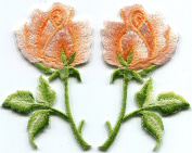 Peach roses pastel pair flowers embroidered appliques iron-on patches new S-1280