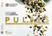 Pulses - A Global Journey Through Recipes from Leading Chefs (English)