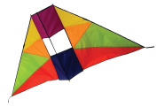 In the Breeze Rainbow Conyne Delta Kite, 1.8m