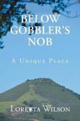 Below Gobblers Nob