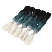 Silike Ombre Jumbo Braiding Hair Afro Braiding Hair Extensions 3 Tone Colour 60cm (5 Pieces)